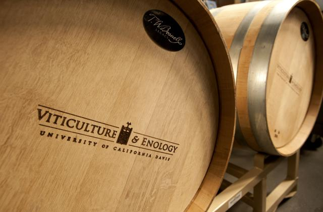 UC Davis Viticulture and Enology Wine Barrel
